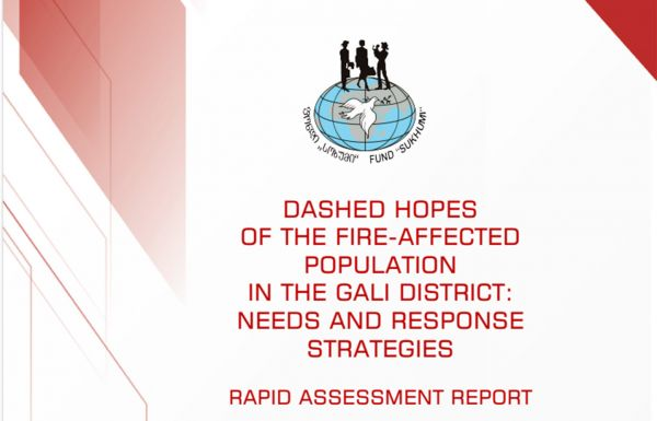 """Dashed hopes of the fire-affected population in the Gali district: Needs and response strategies"""